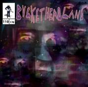 Buckethead - Wall to Wall Cobwebs